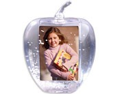 #2720 - Apple Snow Globe